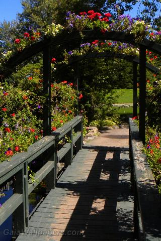 Wooden bridge covered with flowers - Free desktop wallpapers