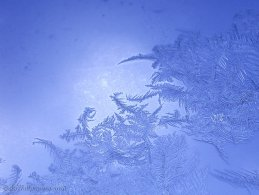 Frozen water on the window desktop wallpapers