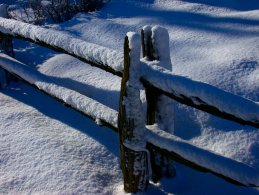 Snow-covered fence desktop wallpapers