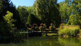 Enchanting pond desktop wallpapers