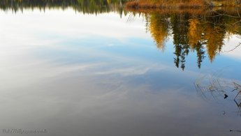Reflection of an autumn forest on a calm lake desktop wallpapers