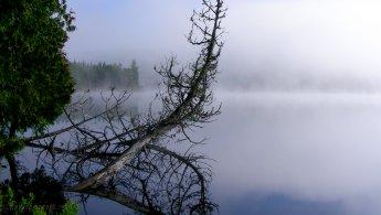 Sun break through the foggy morning on the lake desktop wallpapers