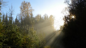 Autumnal sun rays desktop wallpapers