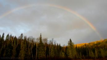 Morning rainbow over the autumnal forest desktop wallpapers